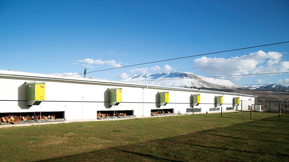 Sirokko Farm - Tavuk Çiftiliği Isıtıcıları - Doğalgazlı Kapalı Alan Isıtıcı Sıcak Hava Üreteçleri - KM 802